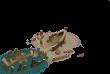 Hidden reward incident shipwreck.png